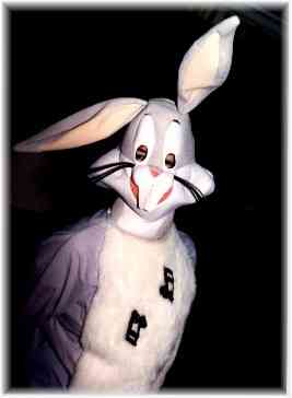 easter Bunny Chicago Singing Telegrams Cute T Bunny